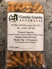 Turmeric - 100 quality capsules - non-allergenic Vege caps