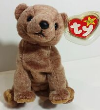 """TY Beanie Babies """"PECAN"""" the Bear - MWMTs! RETIRED! A MUST HAVE & PERFECT GIFT!"""
