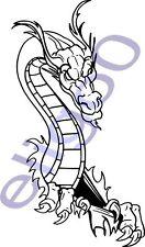 Dragon auto moto decal Adesivo Vinile 33