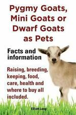 Pygmy Goats as Pets. Pygmy Goats, Mini Goats or Dwarf Goats: Facts and Informati