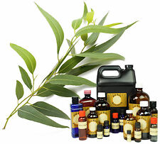 16 oz EUCALYPTUS PURE ESSENTIAL OIL * THERAPEUTIC GRADE DISPENSER LID