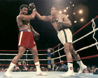 1974 Boxing MUHAMMAD Ali vs GEORGE FOREMAN 8x10 Photo Rumble in the Jungle Print