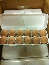 Ceramic chicken nest egg, Brown, home decor, Listing is for 1 Egg