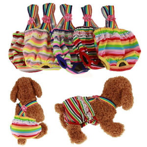 IC- Multicolor Stripes Female Dog Pet Sanitary Knickers Diaper Puppy Pants Under