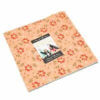"""Walkabout Layer Cake ~ Moda ~ (42)10"""" Fabric Square 100% Cotton 37560LC"""