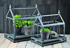 Wardian Case Terrarium Set Evergreen Glass Metal Display Case Table Top
