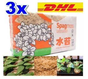 3x Spagnum moss 12 liter Fiber Orchid Plant Natural Clean Spagmoss