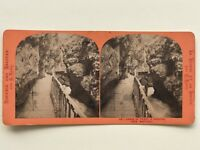 Suisse Reggiseno Del Trient A Vernayaz Martigny Fotografia - Vintage Albumina