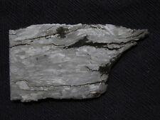 Campo Del Cielo Iron Meteorite Slice Impact Deformed Widmanstatten Pattern 136 G