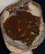 137.25 Carat Ethiopian Chocolate Shewa Rough Opal #3530319032