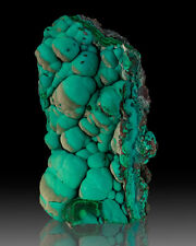 """4.8"""" Botryoidal Turquoise CHRYSOCOLLA w/Partial TanGray Overcoat Congo for sale"""