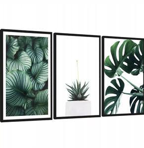 Set Of 3 Botanical Prints Monstera Leafs Pictures Black Frame FRAMED