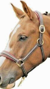"English Leather Raised Padded 8/8"" Horse Halter Headcollar Pony Cob Black Brown"
