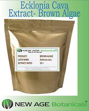 ECKLONIA CAVA  (Brown algae)  EXTRACT [20:1] - 100G