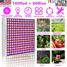 225 LED Grow Light Plant Lamp For Indoor Greenhouse Hydroponic Plants Veg Flower