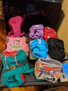 Miscellaneous Female dog lot Harnesses clothes diapers XS/S