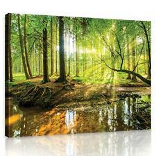 CANVAS Leinwand bilder XXL Sonniger Wald  Bild Wandbild 15F0154440
