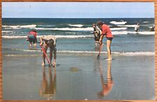 CALIFORNIA CLAMMING ON THE BEACH POSTCARD 292