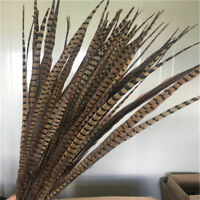 Wholesale 10-100pcs Beautiful Natural Pheasant Tail Feathers 20-100cm/8-40inches