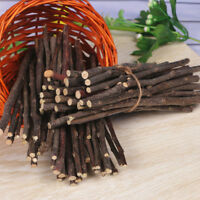 WO_ Apple Wood Chew Sticks Twigs for Small Pets Rabbit Hamster Guinea Pig Toy Ne