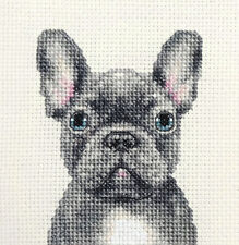 BLUE FRENCH BULLDOG dog, puppy ~ Full counted cross stitch kit + all materials