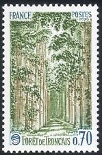 France 1991 Troncais Forest/Forestry/Trees/Plants/Nature/Environment 1v (n43363)