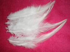 lot de 10 plumes blanche 10 a 12 cm