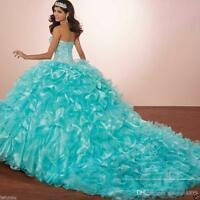 Turquoise Sweet 16 Quinceanera Dress Ball Gown Prom Party Evening Custom Size