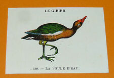 CHROMO 1932 CASINO N°139 LE GIBIER LA POULE D'EAU OISEAU