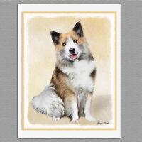 6 Icelandic Sheepdog Dog Blank Art Note Greeting Cards