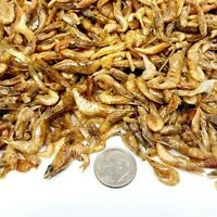 "Red Shrimp--Freeze Dried  1/2"" to 1 &1/4""  Ideal for most Fish, Koi, Turtles"