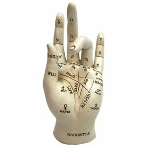 Palmistry Chriomancy Fortune Telling Hand Figurine by Nemesis Now