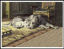 IRISH WOLFHOUND AND WESTIE TERRIER BY THE FIRESIDE LOVELY DOG PRINT POSTER