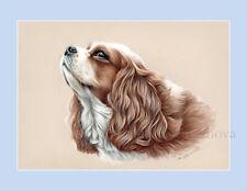 Dog Print King Charles Spaniel by Irina Garmashova