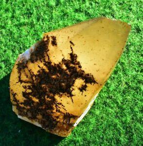 Calcite Dog Tooth Crystal Mineral British Mined Gemstone UK Buy✔ 4cm 108g #3