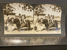 BOMBAY INDIA 1890-1900s, STEREO VIEW COMPANY #P85, WATER CARRIER WITH BUFFALO