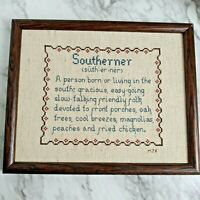 """Completed Cross Stitch in Frame No Glass Southerner Definition  9"""" x 11"""""""