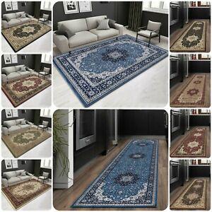 New Large Traditional Oriental Vintage Carpet Living Room Rug Bedroom Runner Mat