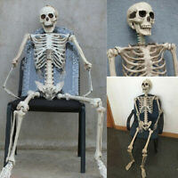 "15.75"" Vintage Halloween CLASSIC JOINTED SKELETON Party Prop Decoration White"