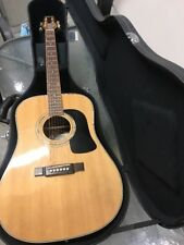 Washburn D10SDL Deluxe Dreadnought Acoustic Guitar with case