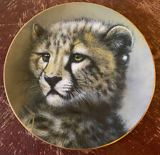 Cheetah Cub Plate by Princeton Gallery Cubs Of The Big Cats Plate Collection