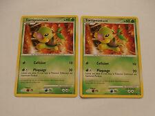 Carte Pokemon Tortipouss 60 pv Platine  x 2 !!!