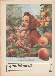 QUADERNO  1940-1950 IL VOLTO AGRICOLO DELL'ITALIA -Q90