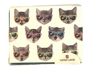 American Greeting Cat With Sunglasses Blank Note Cards With Envelopes