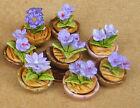 1:12 Échelle Petit Lavande Fleur Bleue Dans Pot Miniatures Maison De Poupées