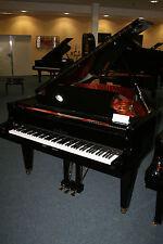Schimmel Klaviere & Flügel