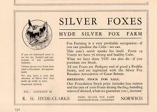 1935 AD SILVER FOXES HYDE CLARKE FARM NORWICH COSTESSEY DEREHAM RD