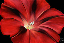 CANVAS ART PRINT FLORAL RED FLOWER PAINTING ON BLACK A1