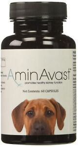 AminAvast Kidney Support for Dogs (60 capsules)