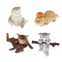 4pcs 1/12 Puppenhaus Miniatur Tier Haustier Katze Figur Nette Frech Katze